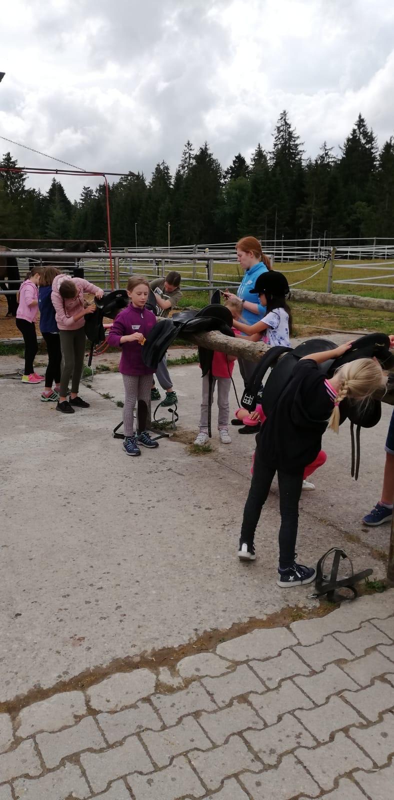 Sattelputzen beim Kinderferienprogramm